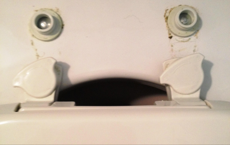 toilet seat hinges undone