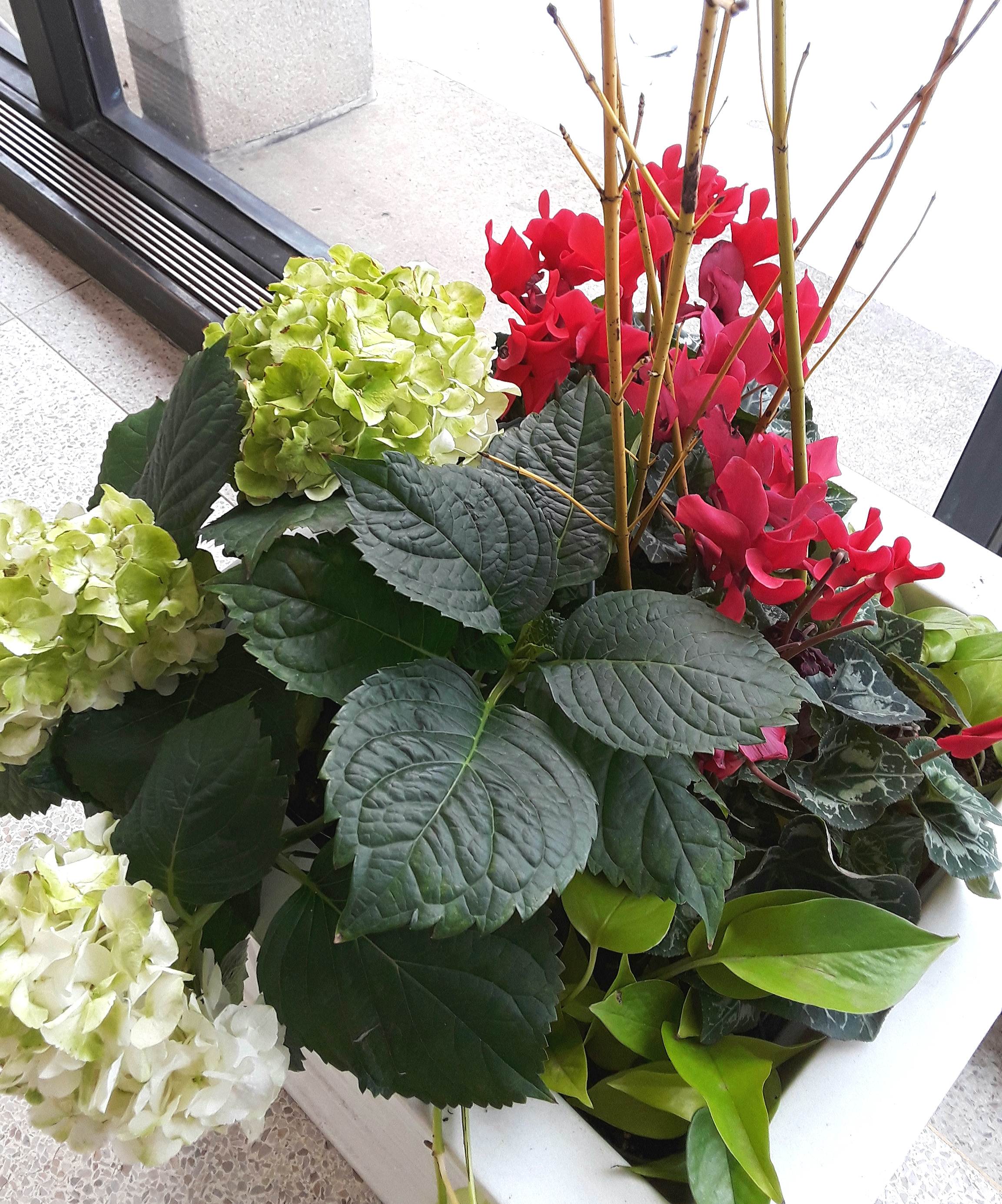 The Christmas planters include red, green and white colored flowers and foliage.