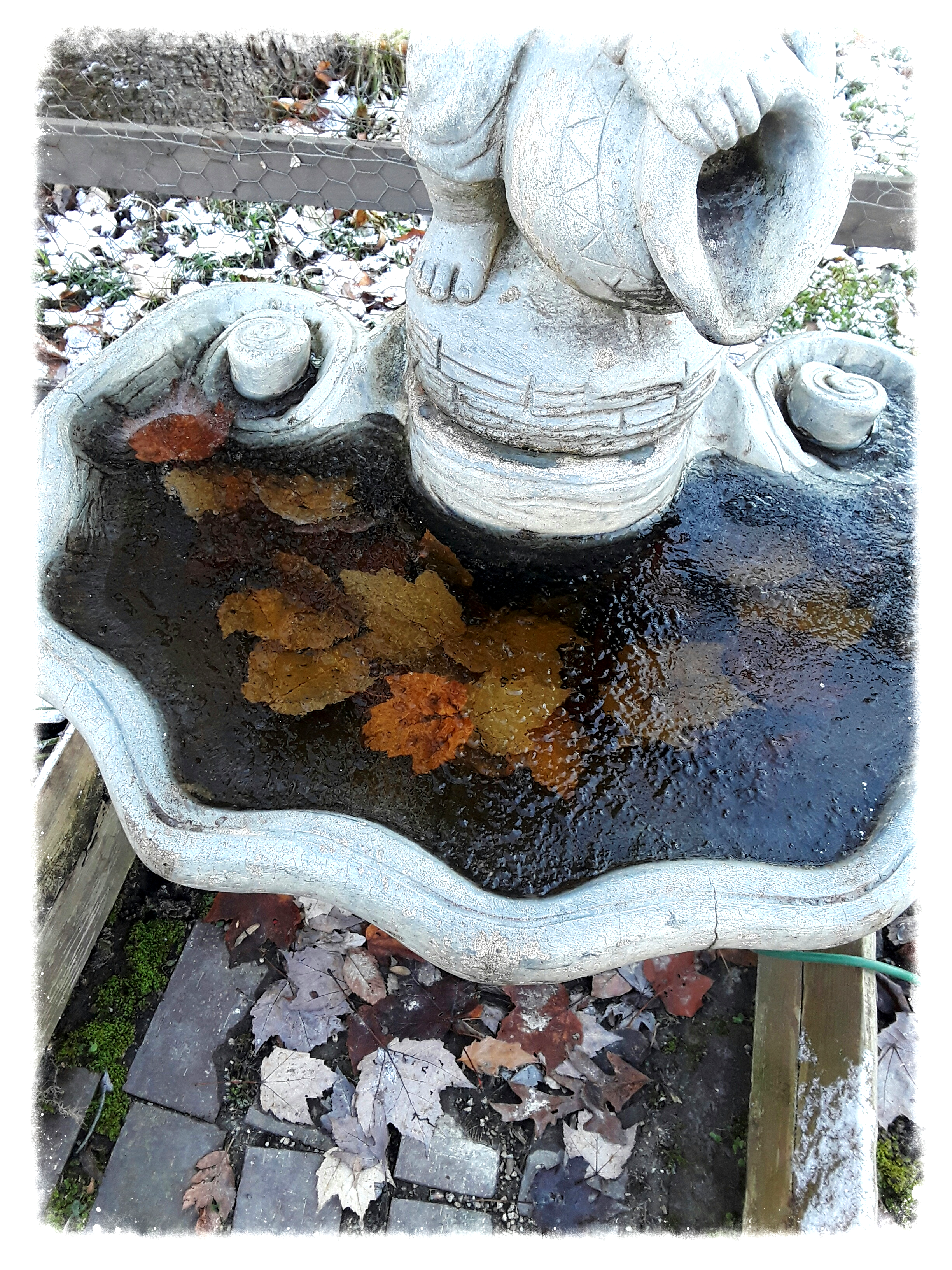 fountain with frozen water