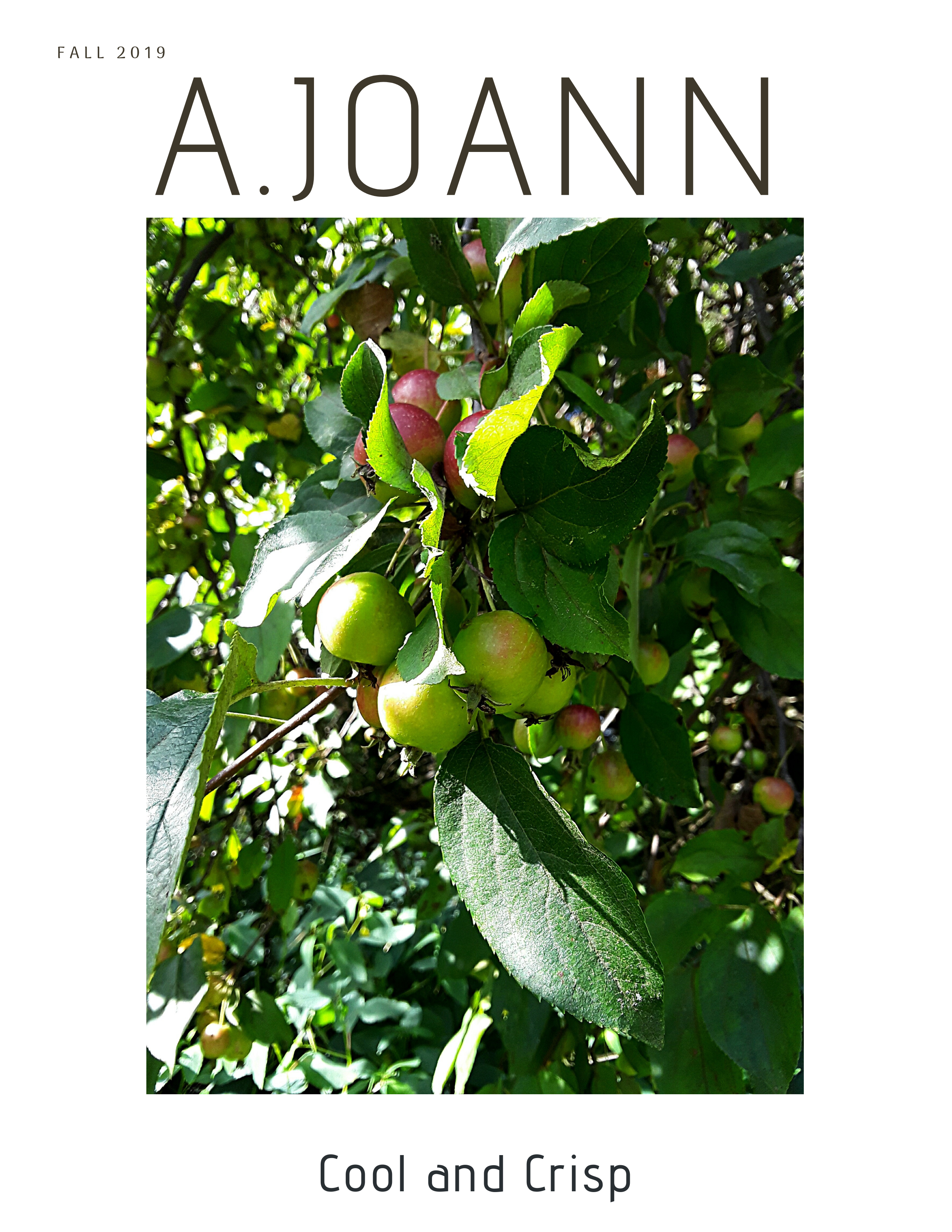 a.joann fall 2019 cover