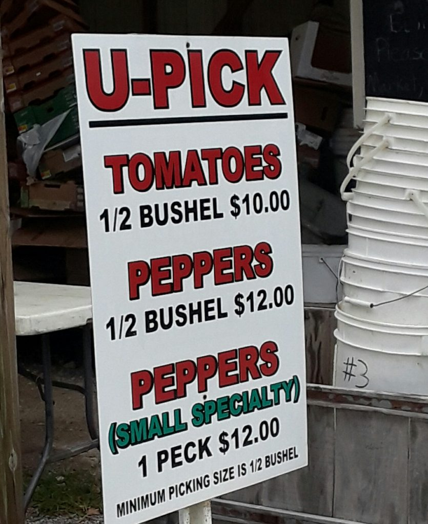 A sign advertises pick-your-own tomatoes and peppers.