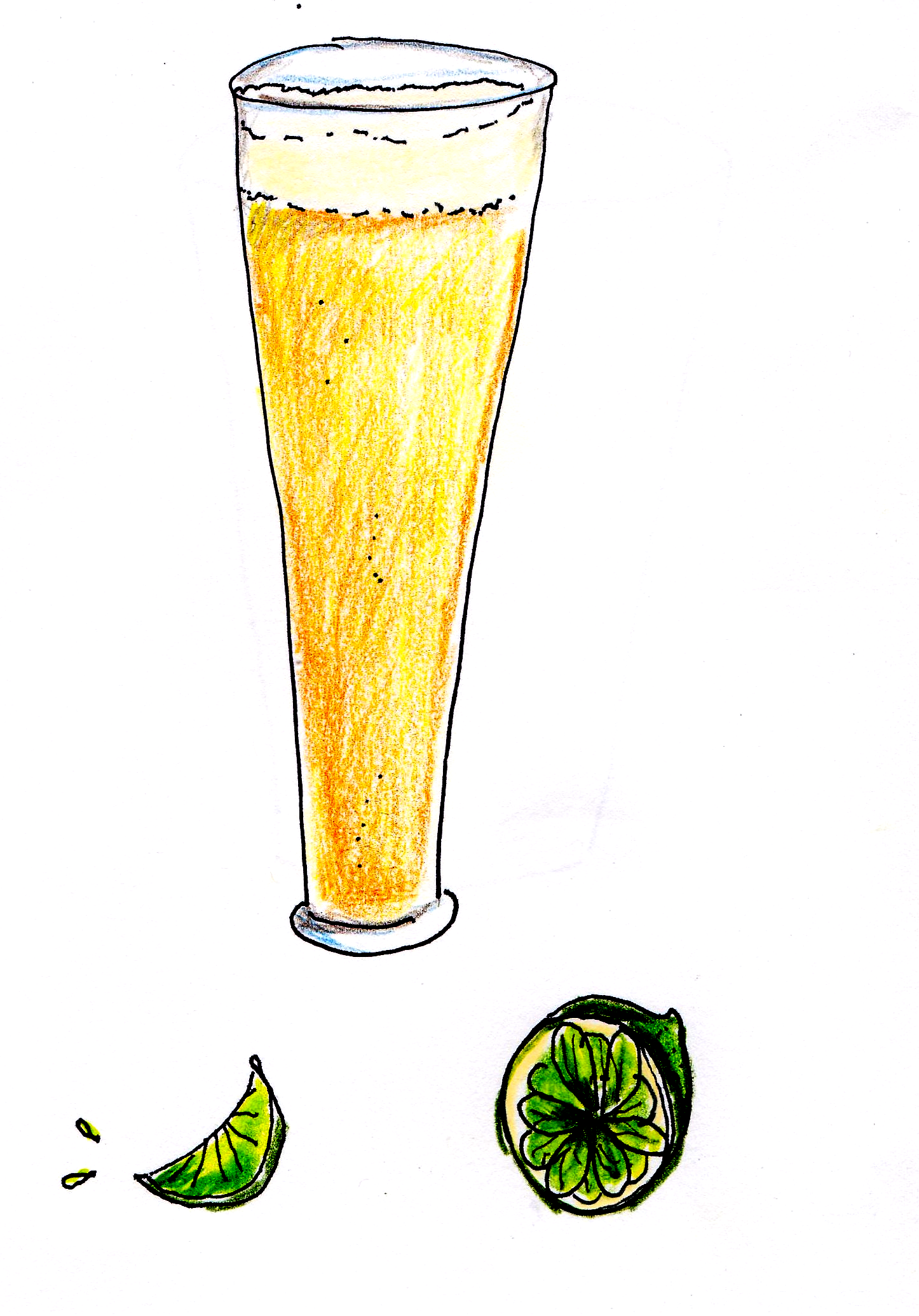 drawing of light beer in pilsner glass with limes