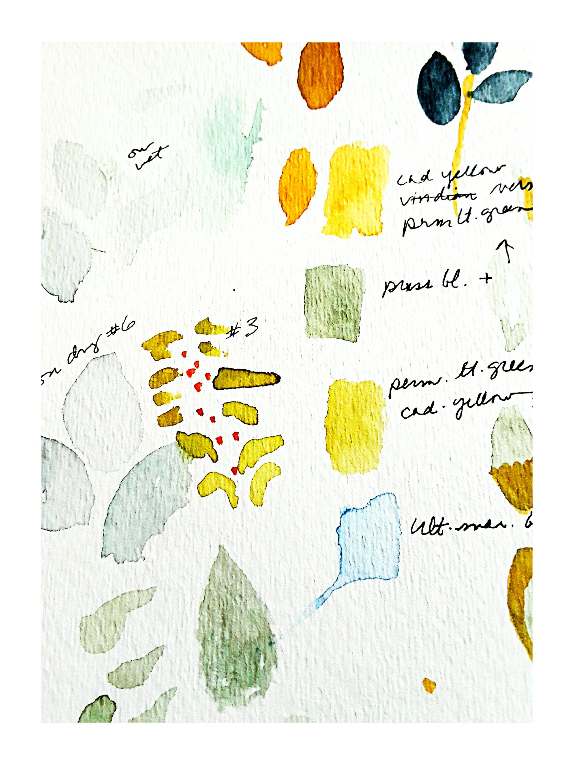 color swatches on paper are experiments in choosing a palette for the painting.
